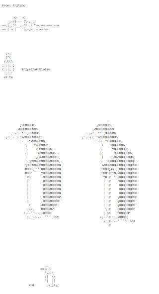 Ascii Art From Around The Net